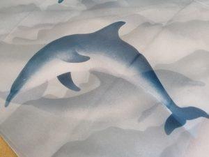 dolphinsm