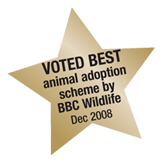 Best adoption scheme 2010