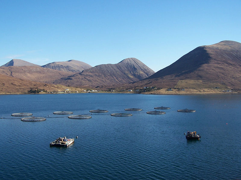 Loch Ainort Fish Farm, Scotland